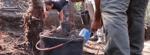 Segredos do passado a descoberto nas escavações S. Julião