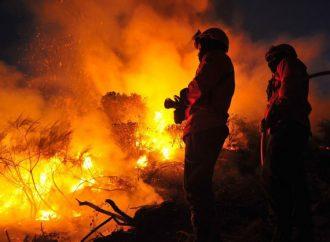 Distrito de Aveiro entre os que tiveram mais incêndios, mas menos área ardida